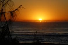 Gold Coast Gold