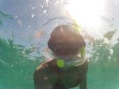 Snorkelling 2 mile reef